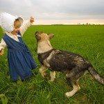 כלבים וילדים / כלבים ותינוקות