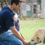 אייל – מאלף כלבים בשרון 072-3922319