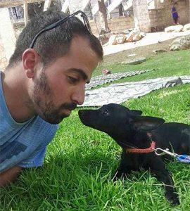 דויד-דהן-מאלף-כלבים-בירושלים
