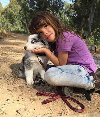 כלבים-וילדים-פנסיון