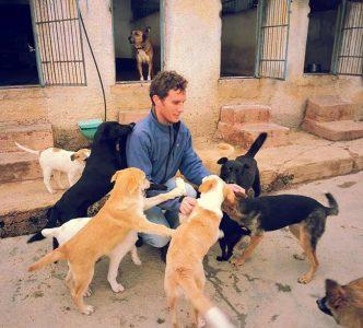 איתן-מטפל-התנהגותי-בכלבים
