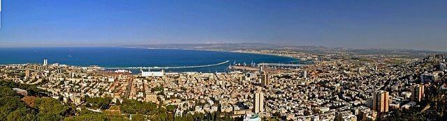 גרים באזור חיפה וזקוקים למאלף?